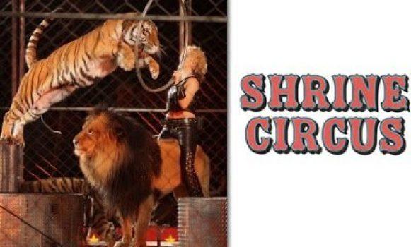 Shrine Circus Admission Tickets Hamburg NY