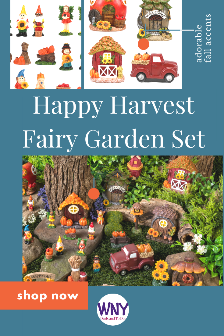Add some autumn fun to your 2021 garden this year with the new Happy Harvest Fairy Garden set available at Dollar Tree!