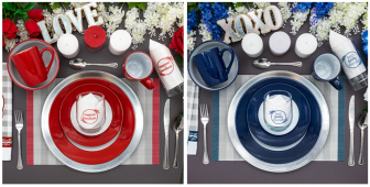 Dollar Tree Two Tone Red and Blue Dishware
